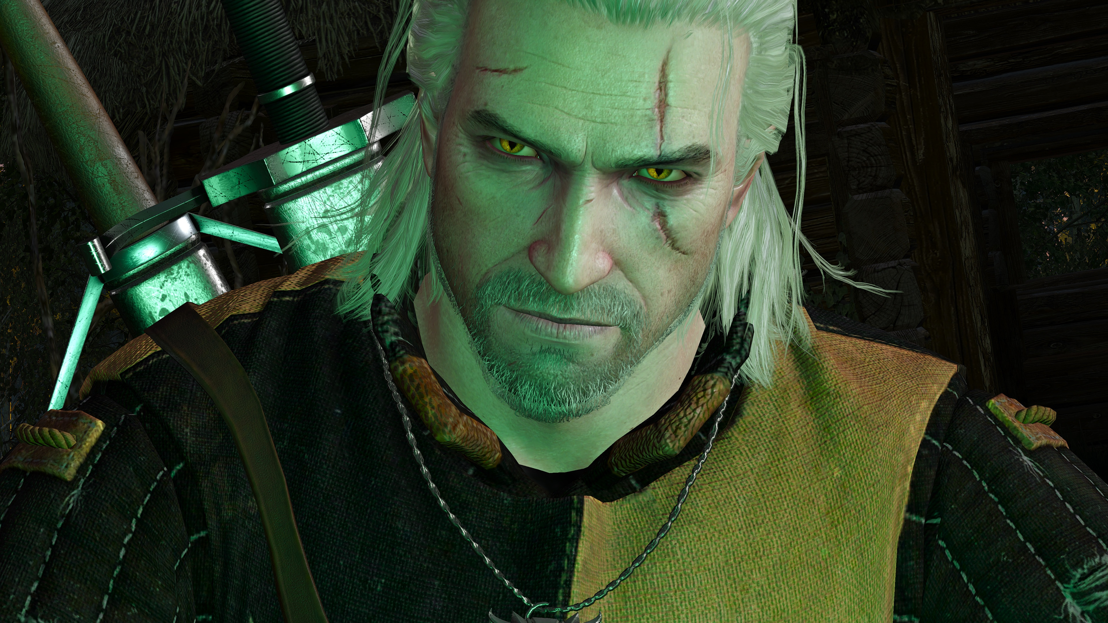 The Witcher 3 Screenshot 2020.07.17- 20.49.15.08.jpg - The Witcher 3: Wild Hunt
