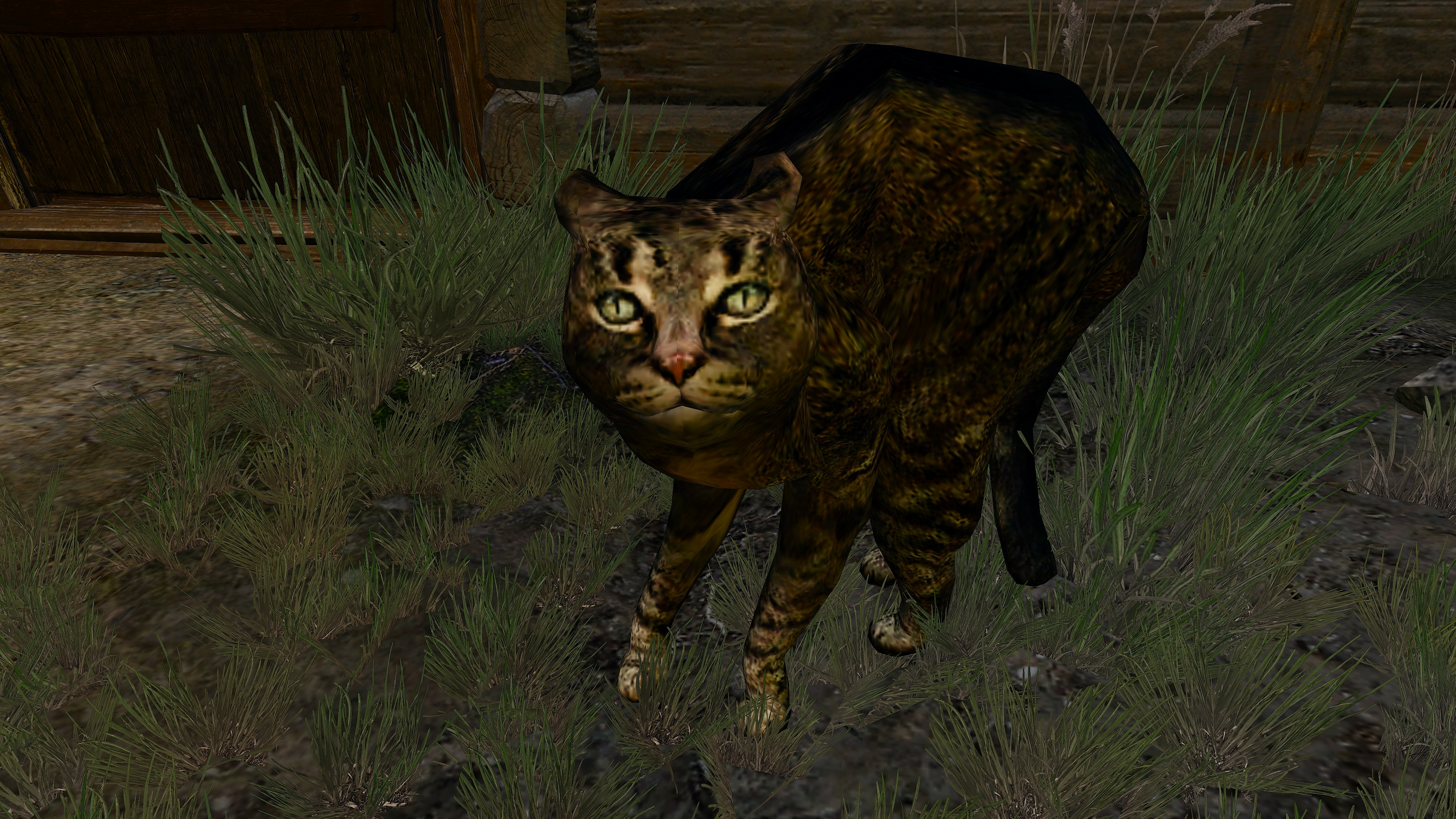 The Witcher 3 Screenshot 2020.07.20 - 19.59.23.jpg - The Witcher 3: Wild Hunt