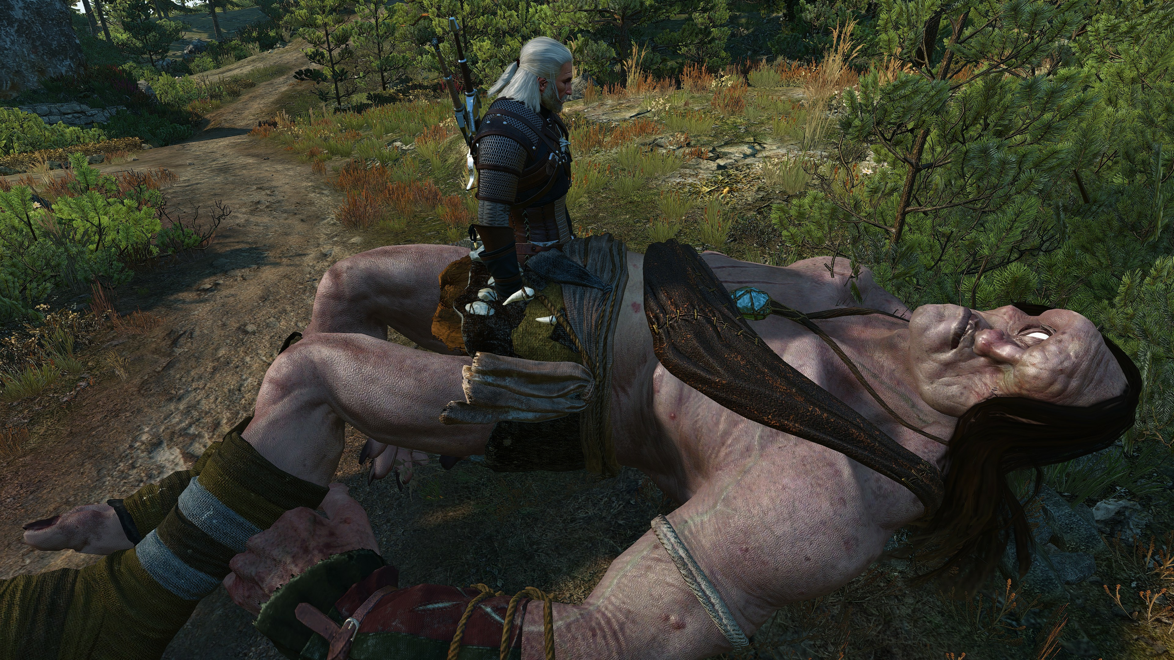 The Witcher 3 Screenshot 2020.07.26 - 14.07.20.jpg - The Witcher 3: Wild Hunt