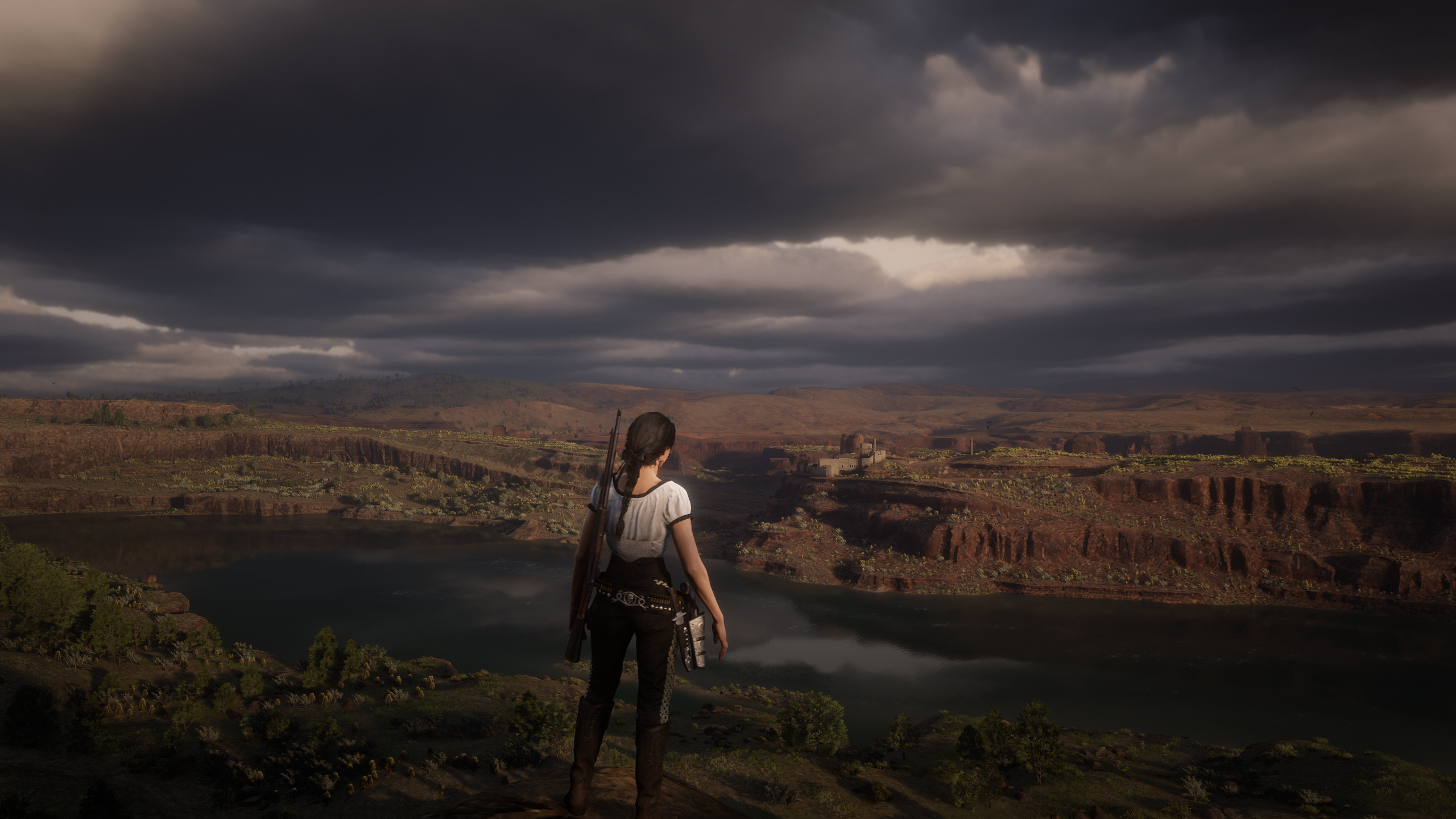Red Dead Redemption 2 Screenshot 2020.12.07 - 14.38.33.75.png - Red Dead Redemption 2