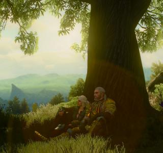 Галерея игры The Witcher 3: Wild Hunt