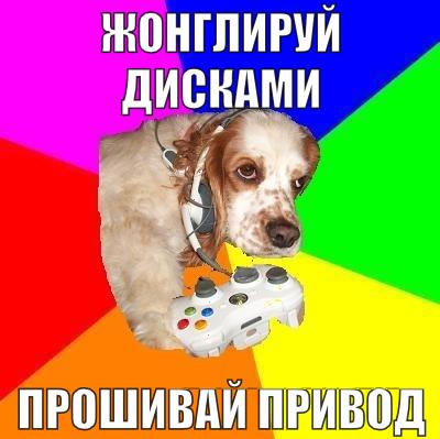 xboxdog - - собака