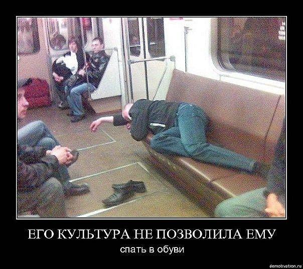 x_22793365.jpg - -