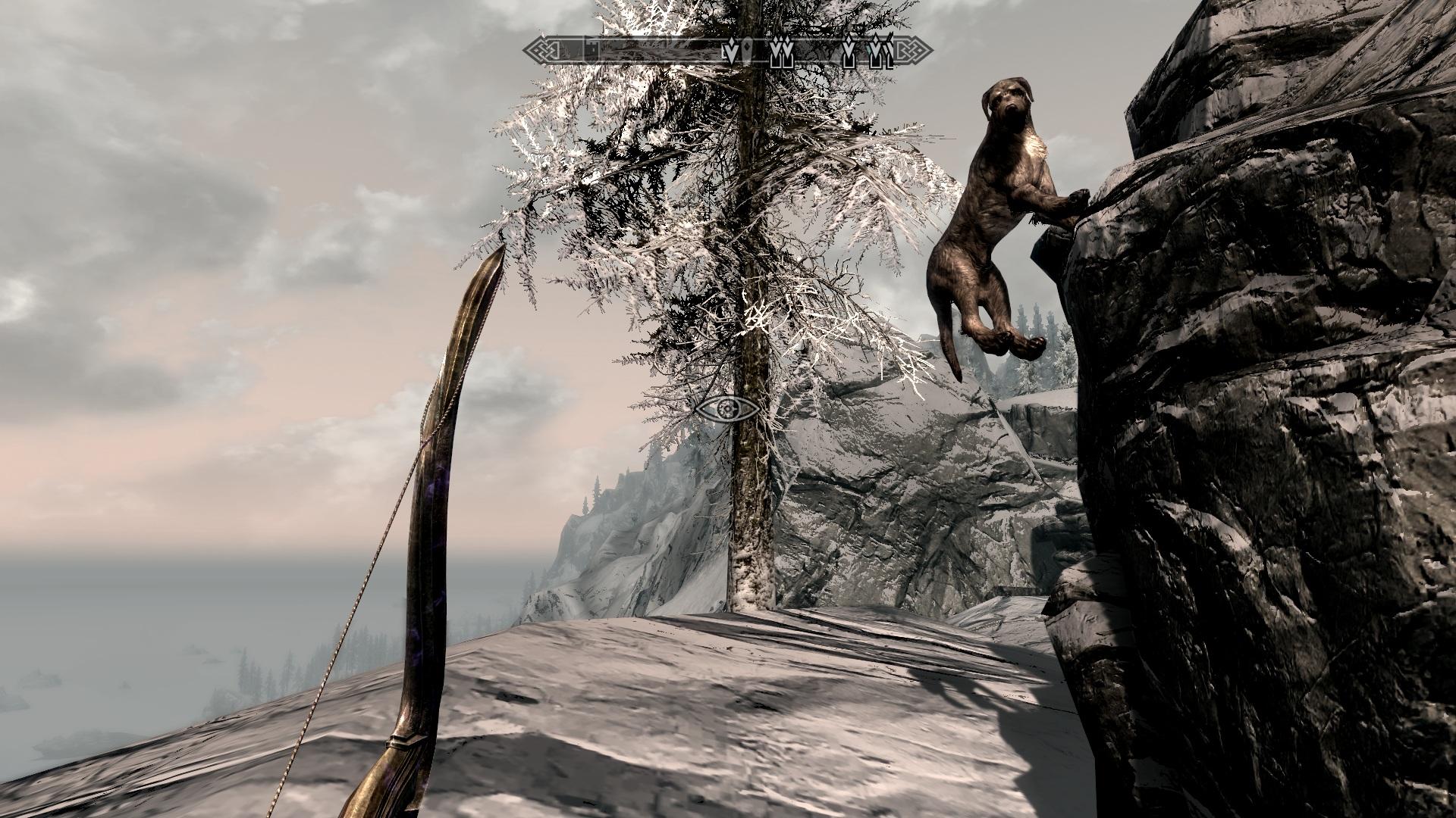 Собака лазает по горам - Elder Scrolls 5: Skyrim, the Барбас, собака