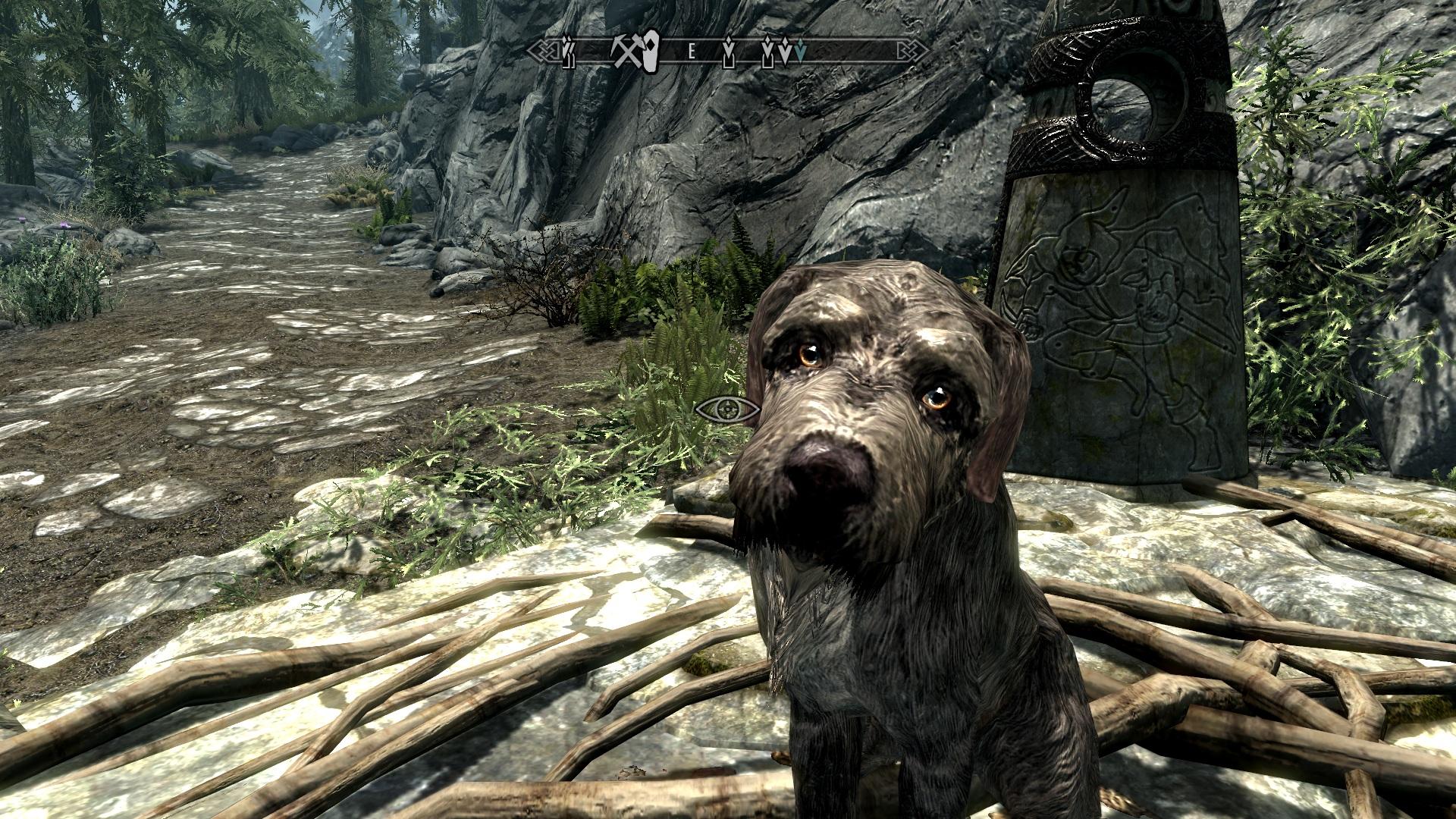 Собака друг человека - Elder Scrolls 5: Skyrim, the Барбас, собака