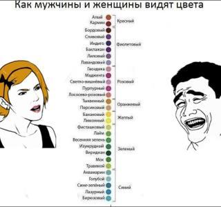 Картинка как мужчина и женщина видят цвета