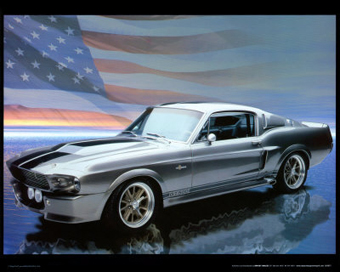 Ford Shelby GT 500 - -