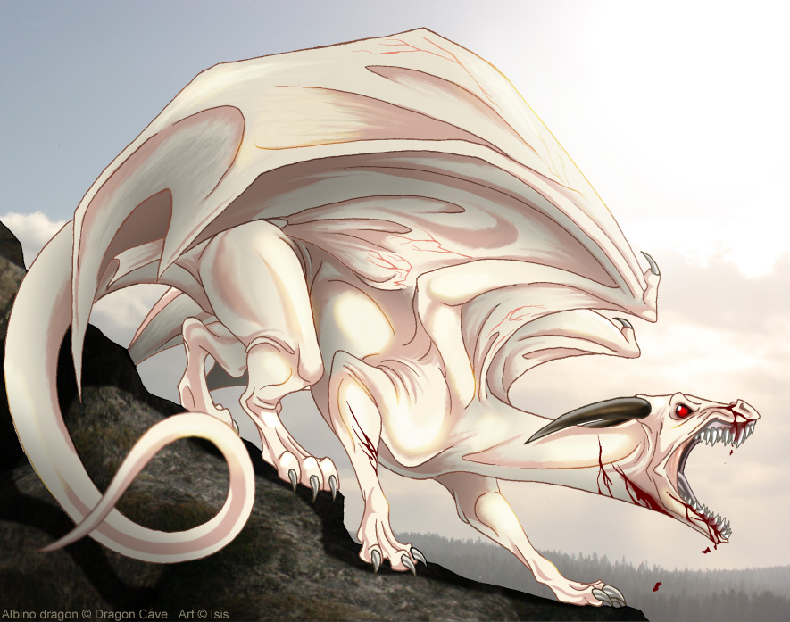 Картинки драконов альбиносов