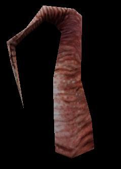 древо - Half-Life 2