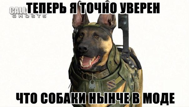 Стильно, модно, молодежно. - Call of Duty: Ghosts CoD., Собака