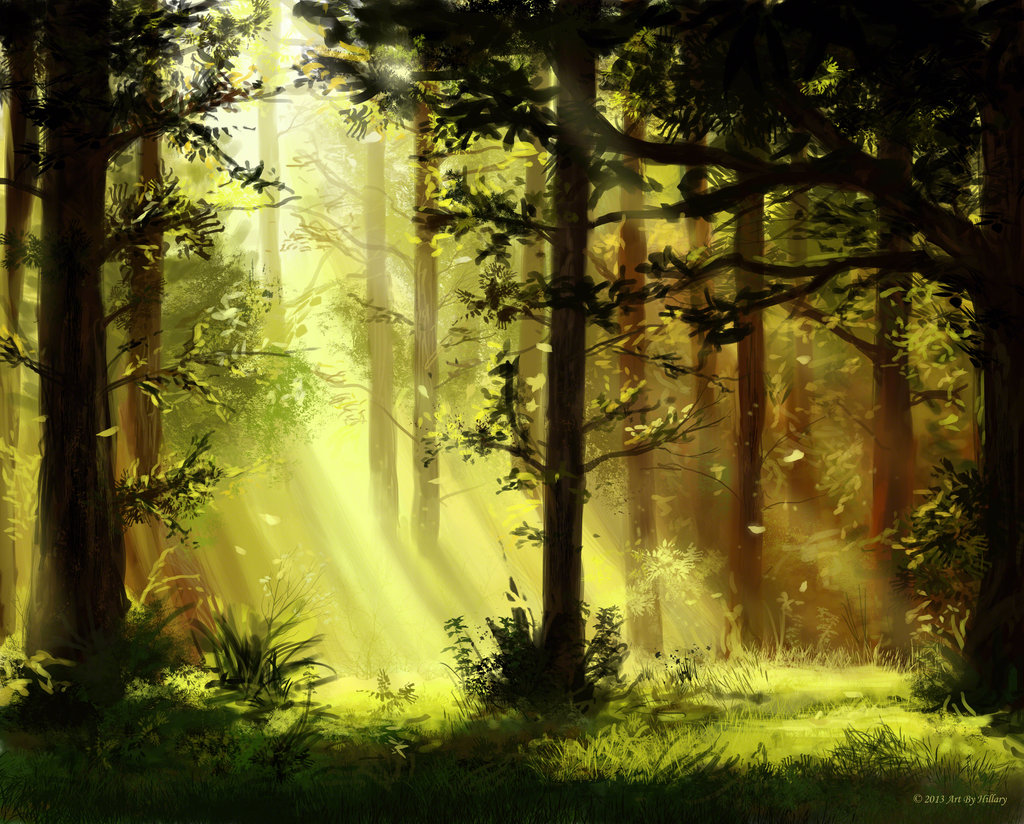 sunlit_trees_by_rachopin77-d66zeza.jpg - -