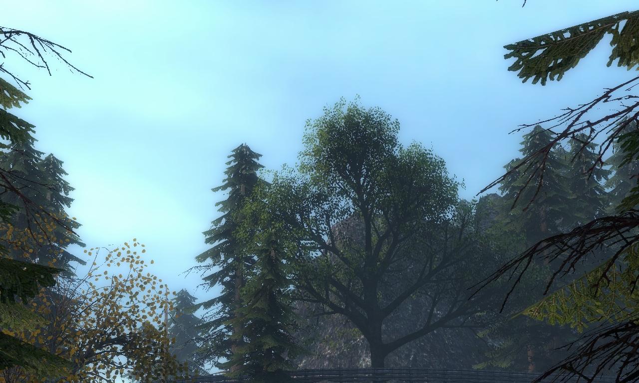 Вайтфорест - Half-Life 2