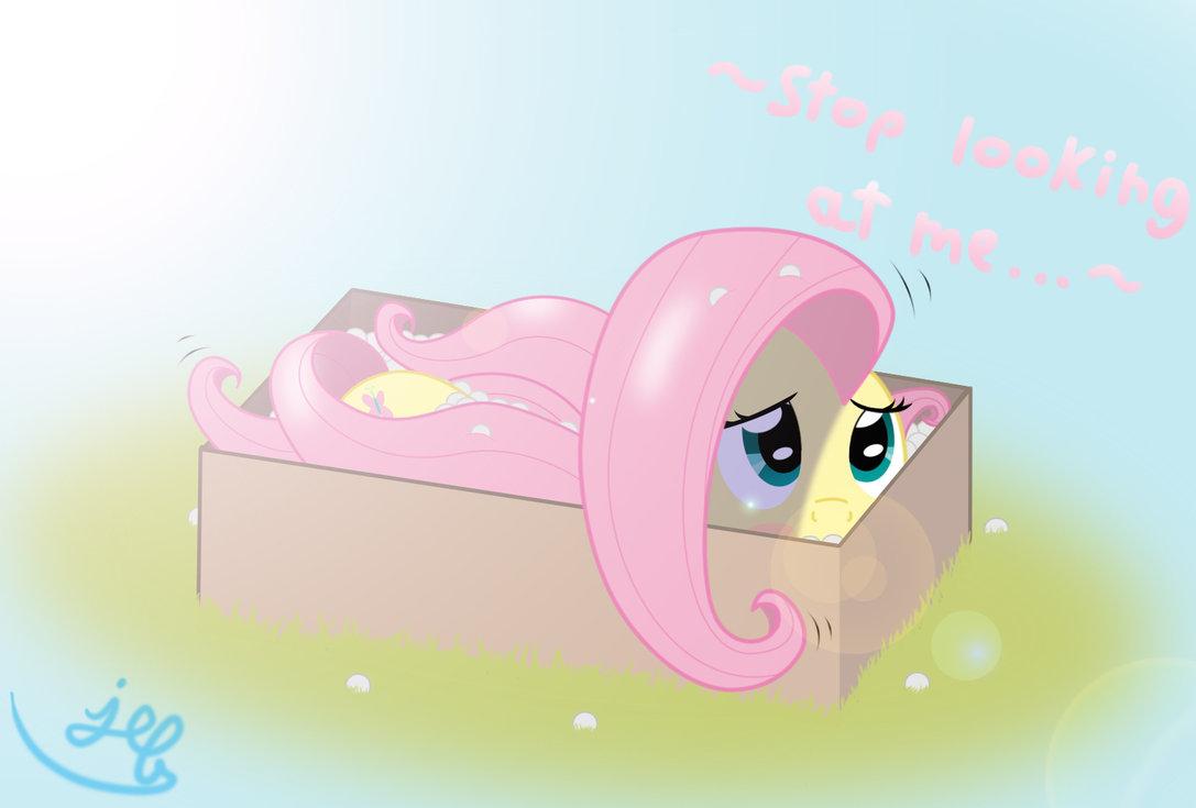 Fluttershyinabox.png - -