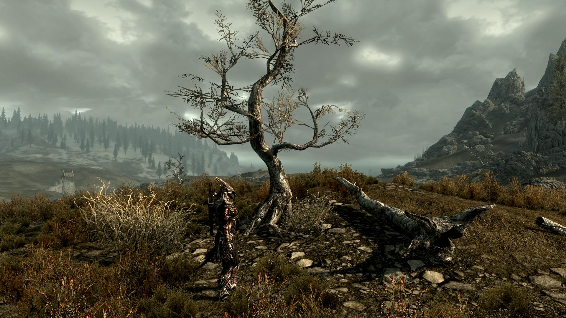 000185.Jpg - Elder Scrolls 5: Skyrim, the