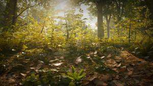 миниатюра скриншота Morels: The Hunt