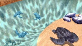 Скриншоты  игры Marine Park Empire