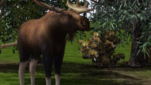 миниатюра скриншота WildLife Park 2