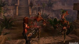 Скриншоты  игры Frater