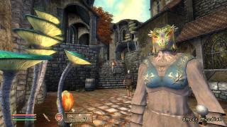 Скриншоты  игры The Elder Scrolls 4: Oblivion