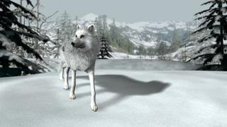 Скриншот Nancy Drew: The White Wolf of Icicle Creek
