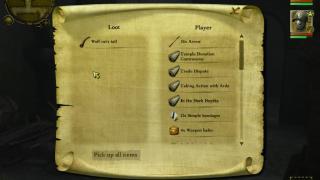Скриншоты  игры Drakensang: The Dark Eye