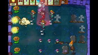 Скриншоты  игры Plants vs. Zombies