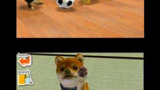 Скриншот Nintendogs: Best Friends