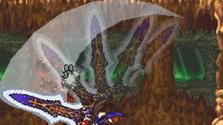 Скриншот Castlevania: Order of Ecclesia