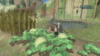 Скриншоты  игры Nier