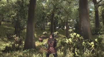 Скриншот Arcania: Gothic 4