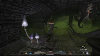 Скриншоты  игры Arcania: Gothic 4