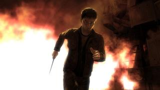 Скриншоты  игры Harry Potter and the Deathly Hallows: Part 2