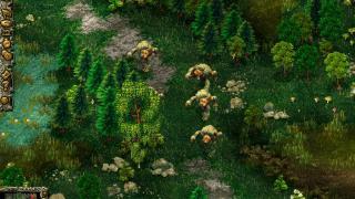 Скриншоты  игры Northland