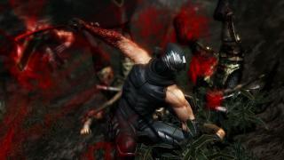 Скриншот Ninja Gaiden 3