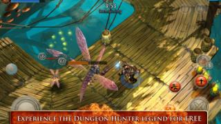 Скриншот Dungeon Hunter 3