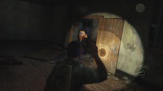 Скриншот Last of Us, the
