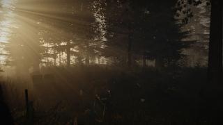 Скриншоты  игры Forest, the