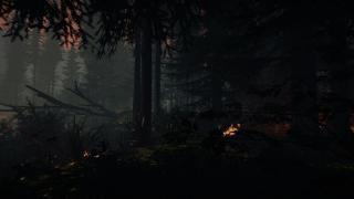 Скриншот Forest, the