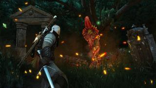 Скриншоты  игры The Witcher 3: Wild Hunt