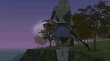 Скриншот Lineage 2