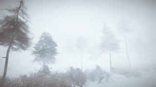 Скриншоты  игры Kona
