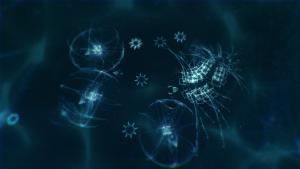 миниатюра скриншота Sparkle ZERO