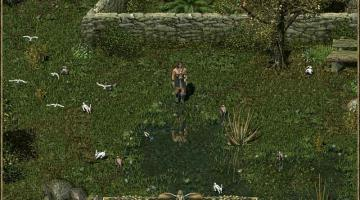 Скриншот Divine Divinity