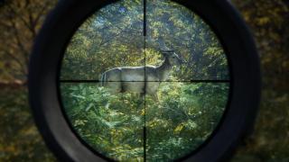 Скриншот Hunter: Call of the Wild, the