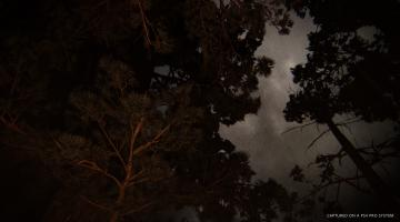 Скриншот The Last of Us: Part 2