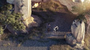 Скриншот Beautiful Desolation