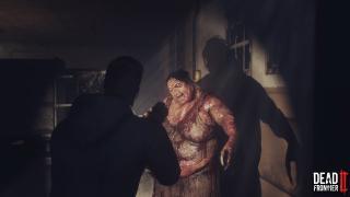 Скриншоты  игры Dead Frontier 2