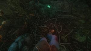 миниатюра скриншота The Cursed Forest