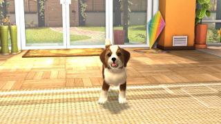 Скриншоты  игры PlayStation Vita Pets