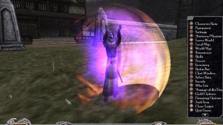 Скриншоты  игры Shadowbane